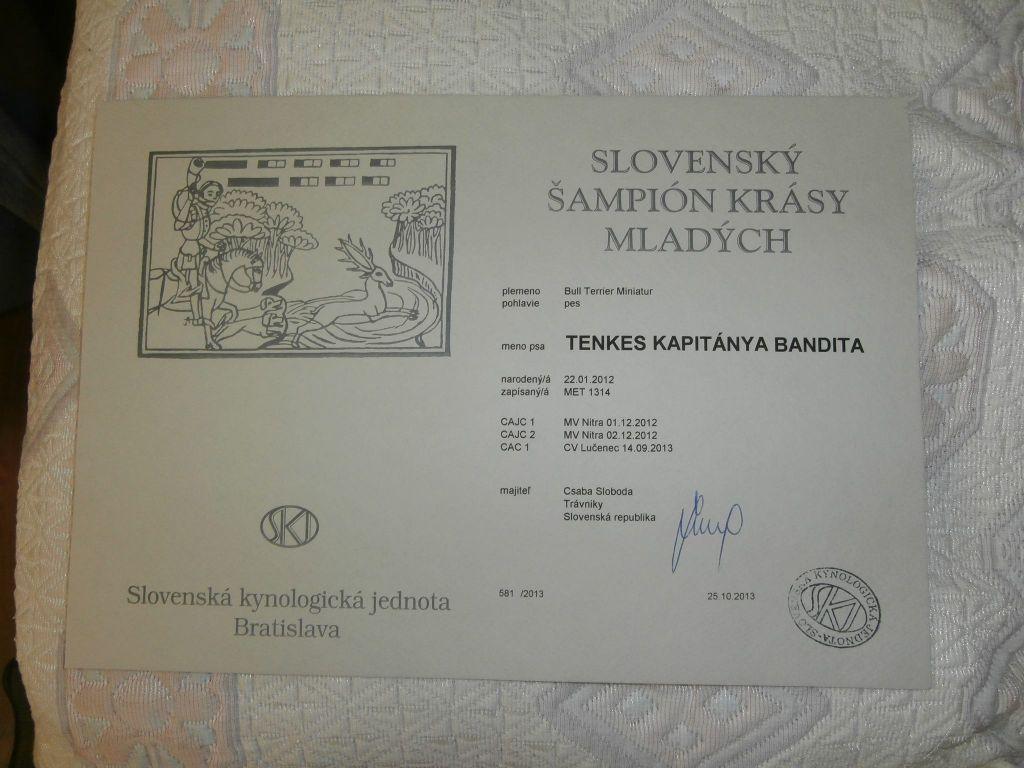 Szlovák Junior Champion Tenkes Kapitánya Bandita!