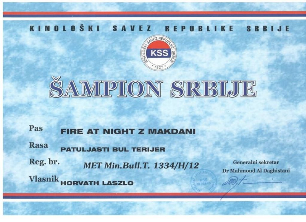 "Szerb Champion FIRE AT NIGHT z Makdani ""Polski"" !"